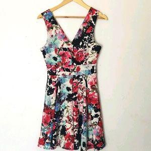Haute Monde Floral fit and flare dress sz Lg